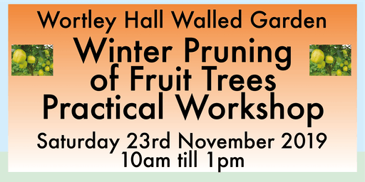 Winter Pruning of Fruit Trees Workshop at Wortley Hall Walled Garden