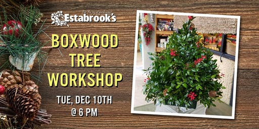Boxwood Tree Workshop