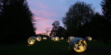 PREVIEW PARTY: Bruce Munro 'Time & Place' tickets