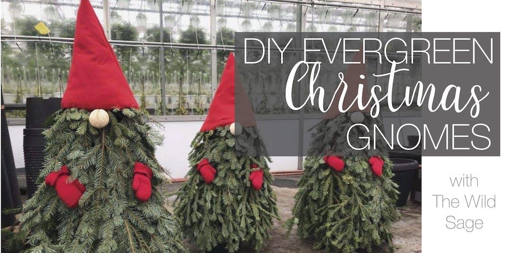 Evergreen Christmas.Diy Evergreen Christmas Gnomes