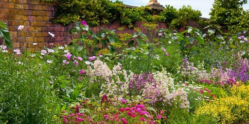 Gardening as if the World Depends on Us with Tovah Martin