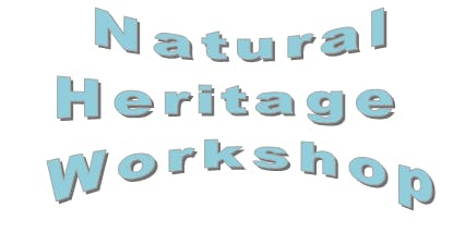Natural heritage workshop @ Chingford Library