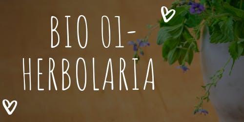 Taller de Herbolaria, Curanderismo, Medicina Natural