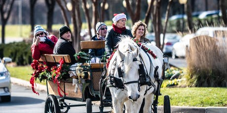 Horse & Carriage Rides at Winter WonderLansdowne tickets