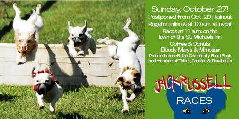Rescheduled 2019 Jack Russell Races