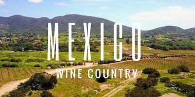 Valle de Guadalupe Gourmet Wine Tasting Tour