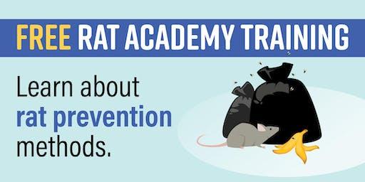 NYC Rat Academy: Williamsburg