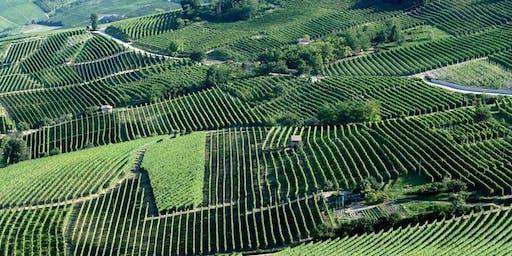 Barolo & Barbaresco: The Great Wines of Piedmont