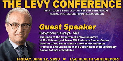 17th Annual Levy Conference in Neurosurgery