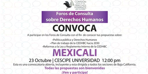 Foros de Consulta sobre Derechos Humanos - Mexicali