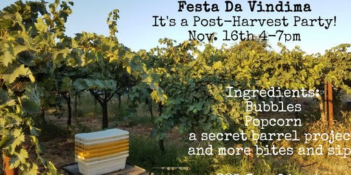 Lusu Cellars Fall Release Party- new releases and pick up