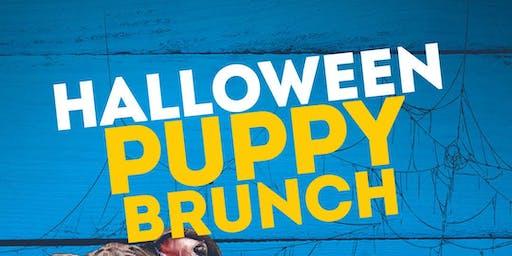 Halloween Puppy Brunch