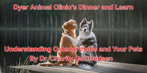 Understanding Osteoarthritis in Your Pets