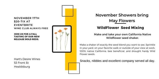Wildflower Seed Shaker Party