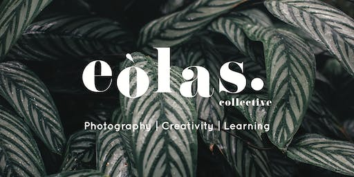 Creative Styling and Photography Workshop
