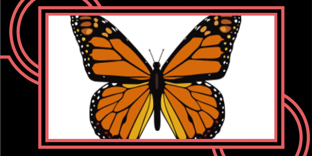 Butterfly Release 2020 Fair Lawn Nj.80 Minutes Around The World