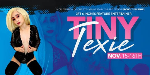 3FT 6 Inches Feature Entertainer  Tiny Texie