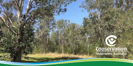 Restoring Wallacia's Wildlife Wonderlands! (Crossman Reserve)