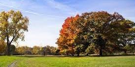 Wonder Walk: Eliza Howell Park