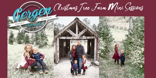 Gergen Photography's Christmas Tree Farm Mini Sessions