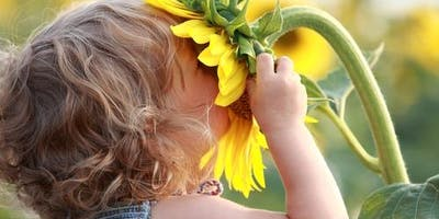 Using Nature in Play Therapy and Counseling
