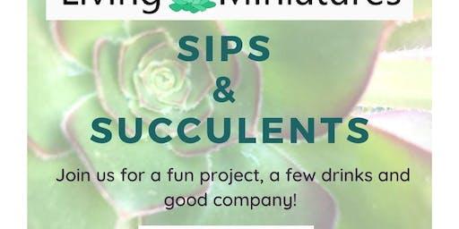 Sips & Succulents