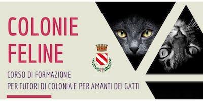 COLONIE FELINE - CORSO DI FORMAZIONE PER TUTORI DI COLONIA E PER AMANTI DEI GATTI