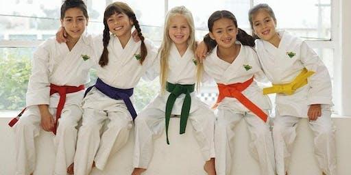 Children's Beginners Martial Arts Class Franklin Oct. 26th