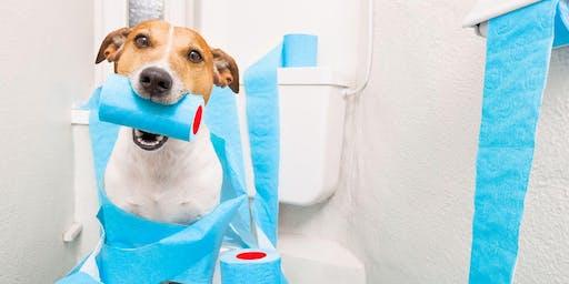 """Webinaire """" Conduite à tenir face à une diarrhée : quelles analyses pour s'en sortir ? """""""