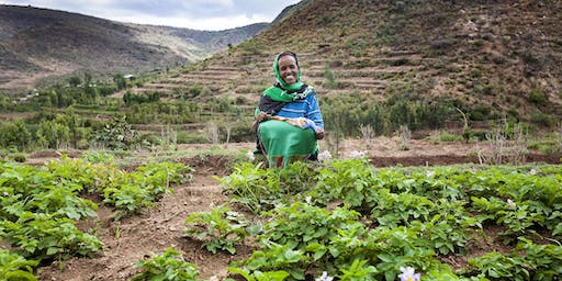Crafting the Next Generation of CGIAR Gender Research