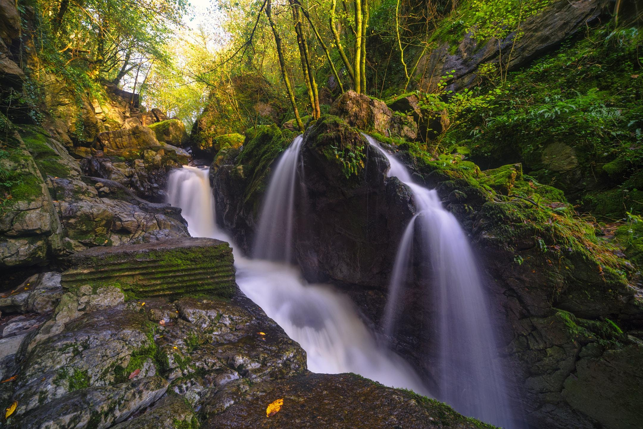 Photographing Autumn colours in Waterfall Country