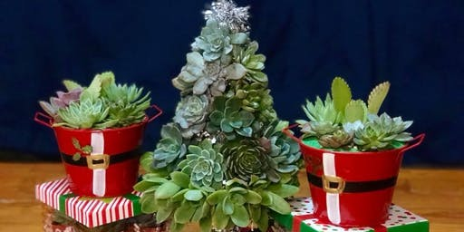 Succulent Christmas Trees!