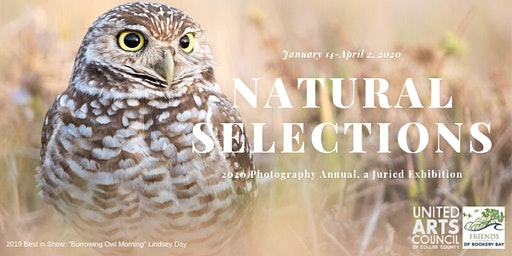 Natural Selections: 2020 Photography Annual