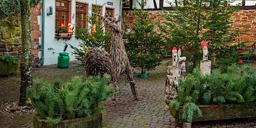 """So,22.12.19 Wanderdate """"Single Wandern Michelstadt mit Einhardsbasilika und Weihnachtsmarkt für 50+"""""""