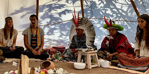 Ayahuasca in Pisac: How a Techie Shaman Transformed a Peruvian Village