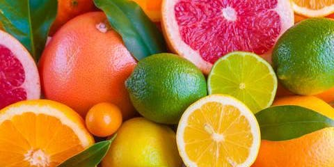 Southeastern Citrus Expo - 2019