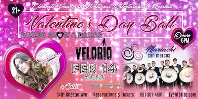 Valentine's Day Ball 2020