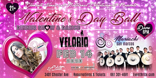 Valentine's Day Ball 2020