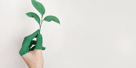 Sostenibilidad y Economía Circular: ¿Quienes la están protagonizando? entradas