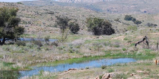 Guided Hike: South Rim Trail at Eagle Peak Ranch