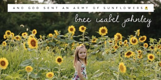 Sunflowers for Bree