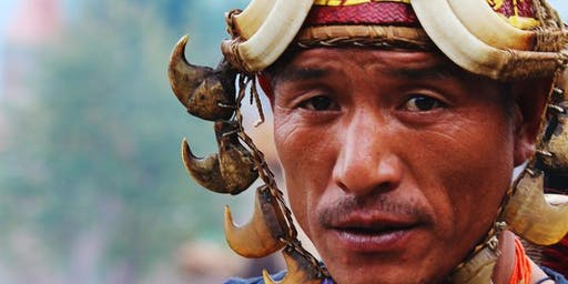 Nagaland Hornbill Experience