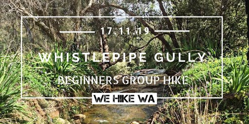 Beginners Group Hike: Whistlepipe Gully
