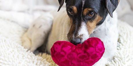 Valentinstag im Tierschultzverein München Tickets