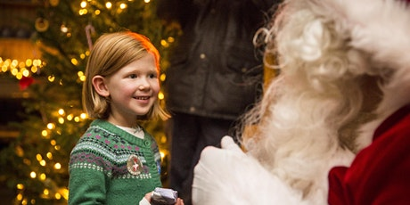 An audience with Father Christmas  tickets