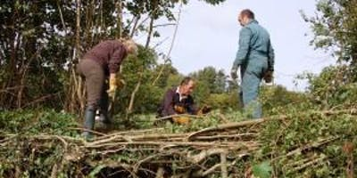 Hedgelaying training day