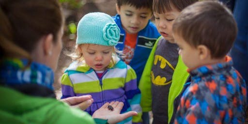 All About Animals at Irvine Nature Center