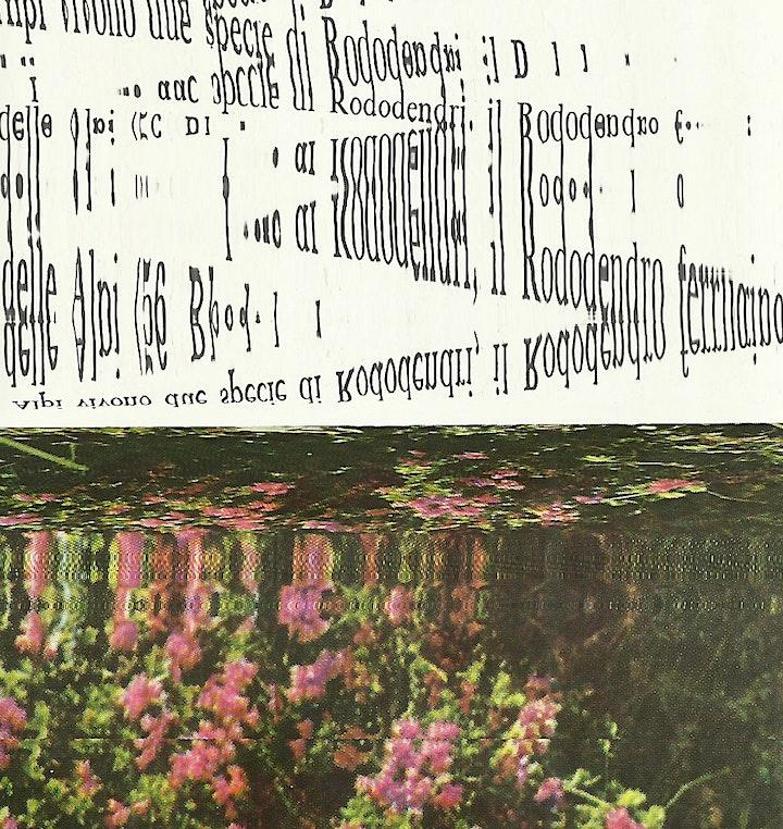 Visual Scratching Workshop with Calimaia & La Circonvalla image
