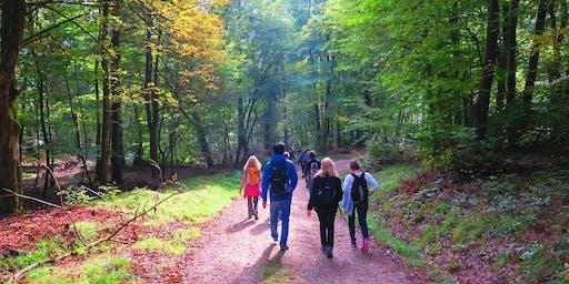 So,29.12.19 Wanderdate Singlewanderung - Der Waldgeist auf der Eisernen Hand für 40-59J