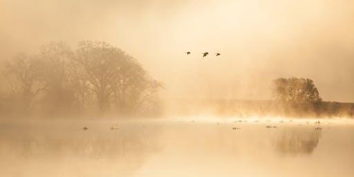 "Sunrise Wetland Walk with ""Duck Man"" Dave Barry"